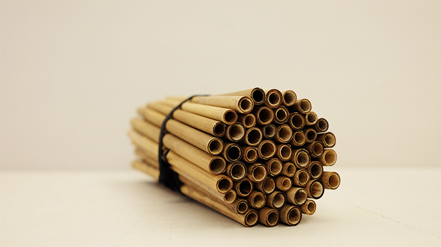 Are bamboo straws the next in thing?
